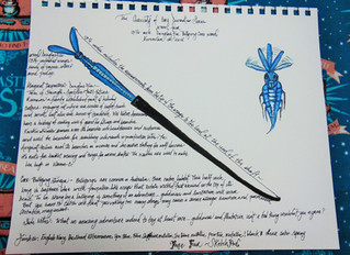 The Curiosity of Wand Core Divination Series-- Sketch & Wand -- Wand Four -- Billywig Core Wand