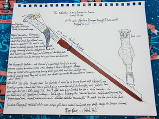 The Curiosity of Wand Core Divination Series-- Sketch & Wand -- Wand Three -- Hippogriff Core Wa
