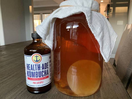 How to Home Brew Kombucha Without Starter Tea
