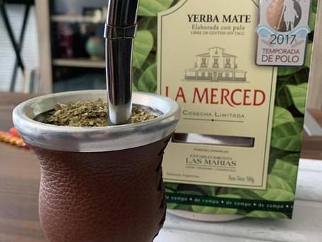 How to Make the Best Yerba Mate Kombucha!