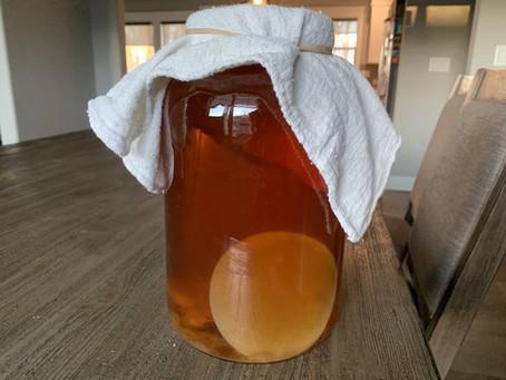 Why Your Kombucha Tastes Like Vinegar