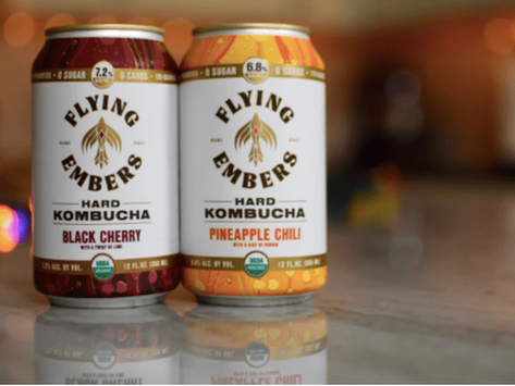 What is Kombucha Beer and How to Make it at Home