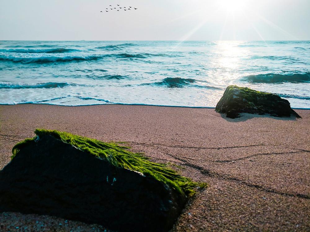 Magnificient beach of Puducherry.