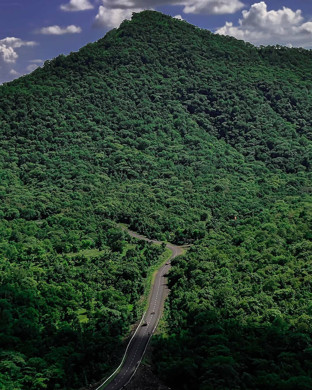Coorg, Karnataka | Scotland of India | Indian destinations that resemble foreign destinations