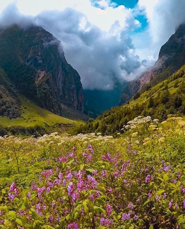 Valley of Flowers National Park, Uttarakhand    indian destinations that resemble foreign locations