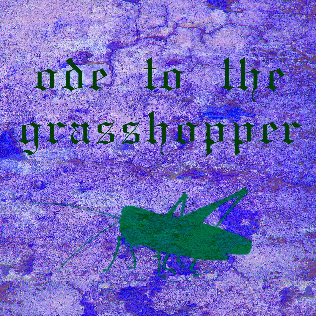 grasshoppppeeeeeeeer kopya