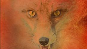 Det røde kobbel af Svend Fleuron