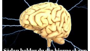 Sådan holder du din hjerne skarp
