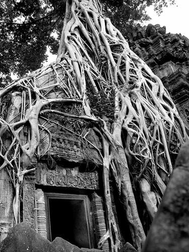 Siem Reap - Angkor - Camboya 2004