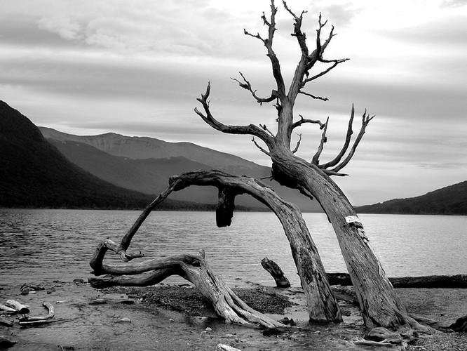 Ushuaia - Tierra de fuego - Argentina - 2005