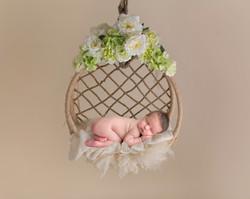 hanging_basket_21