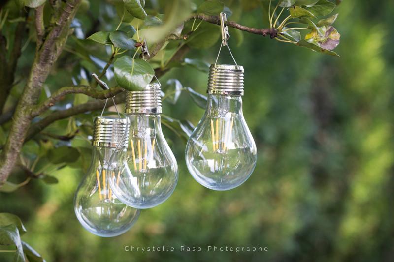 chrystelle raso photographe catalogue terria ampoule de jardin solaire