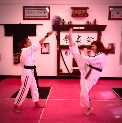 Karate kick.jpg