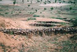 erosioncontrolprotectingfertileland-w640h480