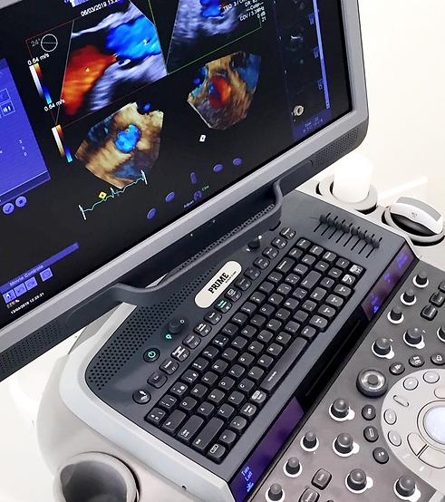 ECHO Ultrasound.png