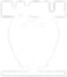 NewEagle_trans_white.png