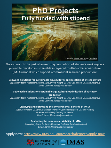 Fully-funded PhD opportunities with us!