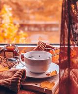 Tea Leaves Mug Set