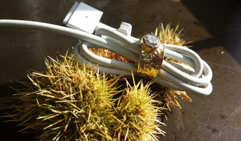 When Relationship Marketing Becomes Prickly