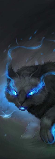 The Shadowcat