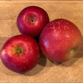 Red apple with russeting