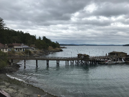 The 2020 PIRE-cirrus workshop @Friday Harbor is now scheduled!