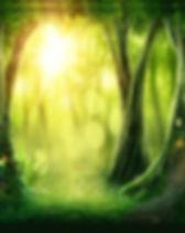 ForestSquare_edited.jpg