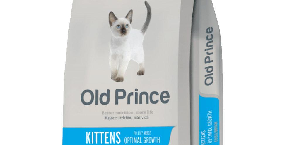 Old Prince Gato Cachorro Kitten