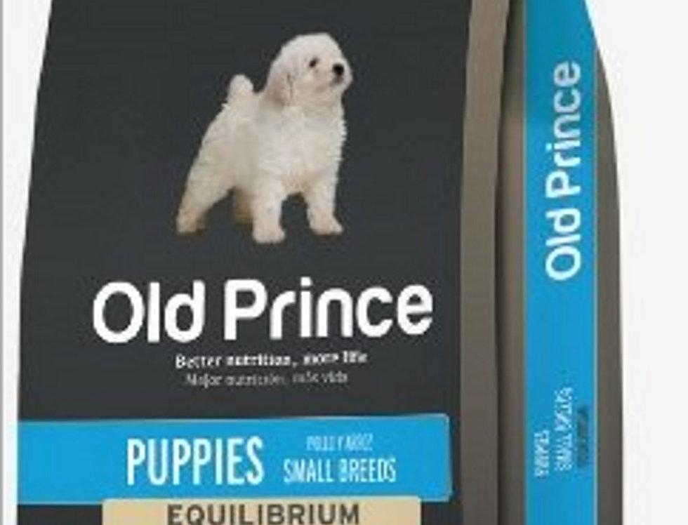 Old Prince Perro Cachorro Small Breed