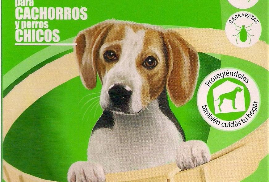 Collar Antipulgas Dominal Perros Cachorros y Raza chica KONING