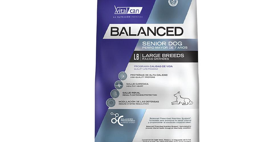 Vital Can Balanced Senior Large Breed 15kg