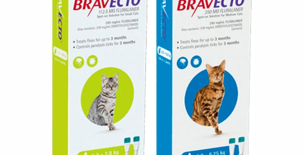 Bravecto Gatos