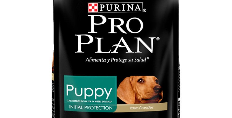 Pro Plan Perro Large Breed Puppy