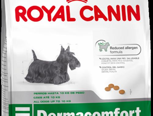 Royal Canin Perro Mini Dermacomfort