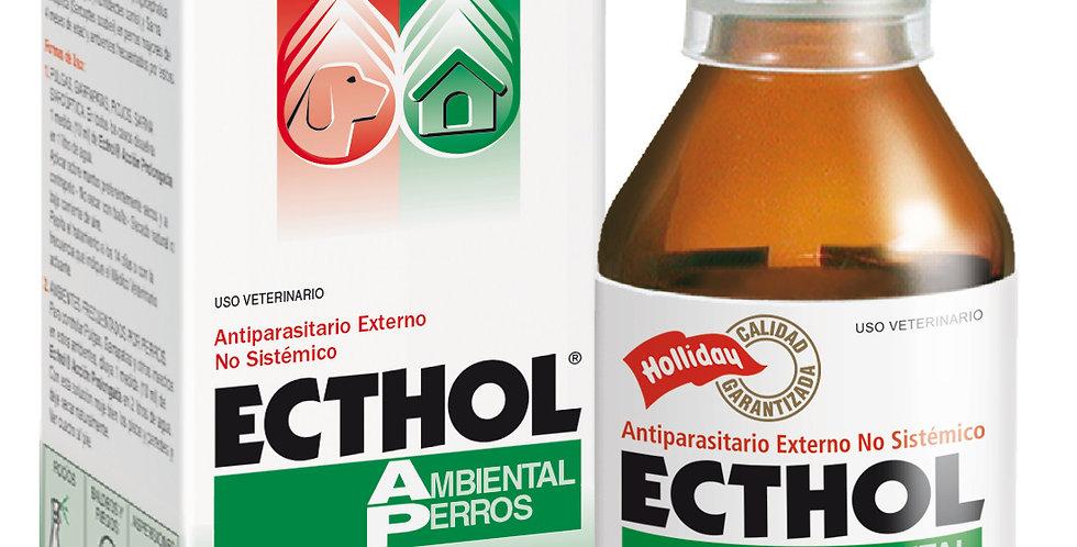 Ecthol Ambiental 100ml HOLLIDAY