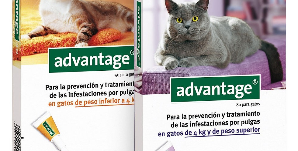 Advantage Antipulgas