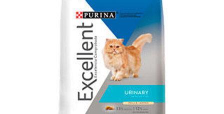 Excellent Gatos Adultos Urinario