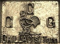 Coq de Gaillac, symbole de Gaillac