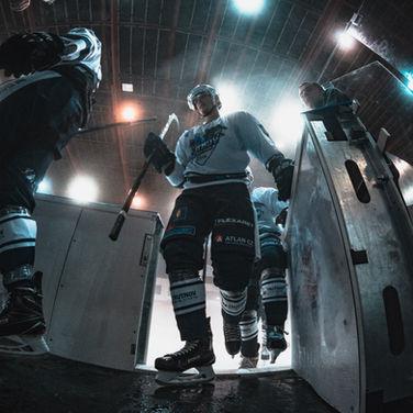 Hockey example.jpg