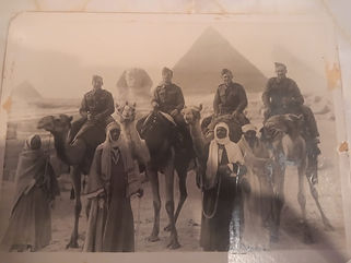 WP Camels Cairo.jpg