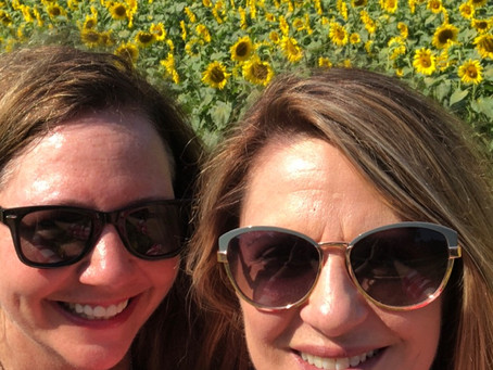 A Day in The Sunflowers with Lunch on the Patio
