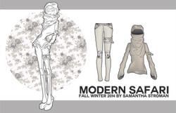 Modern Safari