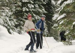 sentier de ski de fond