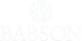 babson-college-logo white.png