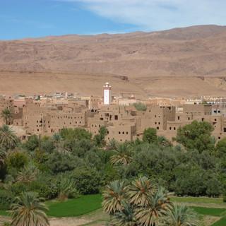 Oase in Zuid- Marokko.JPG