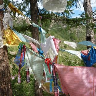 Gebedsvlaggen rondreis Mongolie Saffraan Reizen.JPG