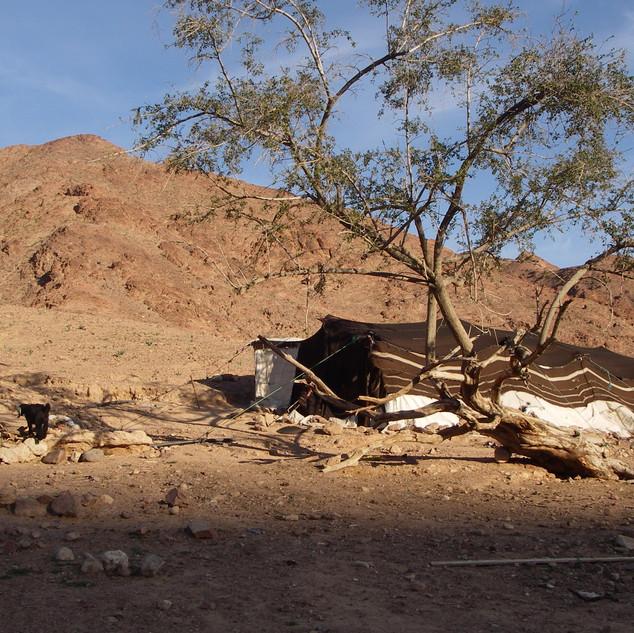 Wandelen in Wadi Feynan.JPG