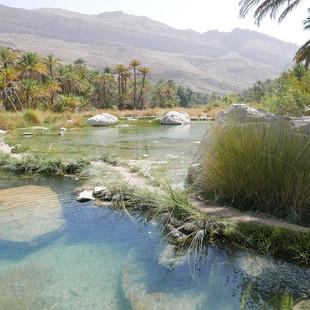 Oase van Wadi Bani Khalid, Oman.JPG