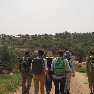 Wandelen op de West Bank.JPG