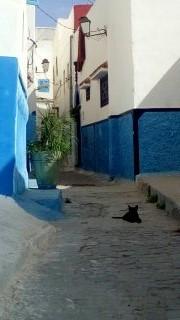 Oujda, Rabat.jpg